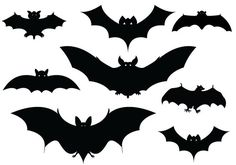 Halloween Bats Silhouettes                                                                                                                                                                                 More