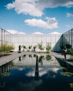 """It's crazy to see where all I've been blessed to go this year. But sometimes it's bet to stay close to home and explore local sites with good friends. Here is the lovely @audraang at the North Carolina Art Museum in the Rodin Sculpture Garden.  Follow the link in my profile to see my """"best of travel  culture"""" post.  #travelphotography #ncma #nc #vsco #rodin #raleigh"""