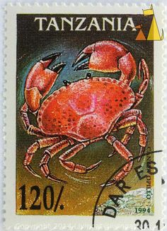 """Red  crab . Most likely an Edible crab or Brown crab [Cancer pagurus] even tough the stamp says """"Cancer opillo""""  Tanzania  stamp 1994"""