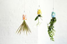 Simple things 10: Sky Planters
