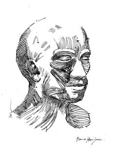 Inside the Human II