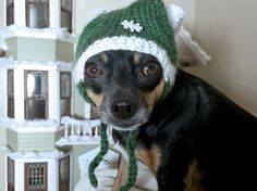 Quixote sporting the snowflake santa hat from https://www.etsy.com/shop/sandycraftshop