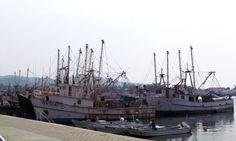 A 100 días del Gobierno de Oaxaca no hay compromiso con el sector pesquero.