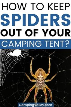 Are you going camping in a tent but you are afraid that a spider will make you company? There are ways to repel spiders outdoors so take my camping tips and tricks to have a pleasurable camping time without spiders.