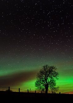Aurora glow, Alford, Scotland. Photo by Kenny Muir