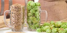 When you're brewing with a hop that you're not familiar with, there's a few ways to evaluate its aromas & flavors. Learn more about these processes.