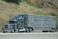 Where Rigs Rule - The Shell Rotella SuperRigs Show Photo & Image ...