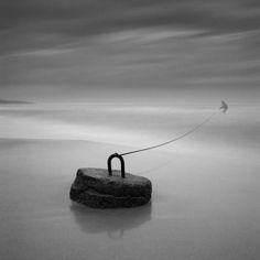 photo by Dariusz Klimczak