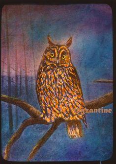 Owl Long Eared at night Lantern Slide Hand coloured Birds Hand Coloring, Lanterns, Owl, Birds, Night, Animals, Ebay, Animales, Animaux