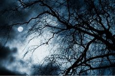 Crazy Full Moon Facts