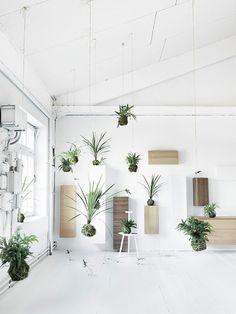Interior Inspiration: Natural Ingredients