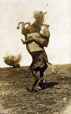 world war 1, explosion startles horse