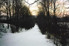 Winter Road, Westfield, NY