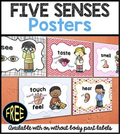 FREEBIE Five Senses Posters with or without body parts labels! Perfect for ELLs!