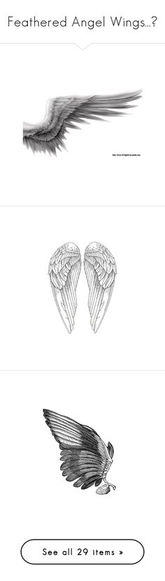 """""""Feathered Angel Wings...❤"""" by seven-sea-style ❤ liked on Polyvore featuring wings, fillers, art, angel wings, other, drawings, backgrounds, doodles, text and effects"""