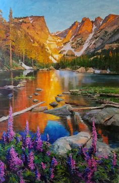 C. Anthony Gallery • Eric Wallis | Evening in the Rockies with Lupine