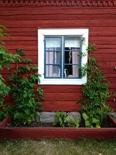 Love the color combination Cottage, Countryside House, Swedish Cottage, House Exterior, Summer House, Red House, Red Cottage, Sweden House, Red Houses