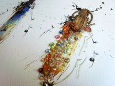 CITY BUG COLLECTION  ---Blepharopsis mendica---  Insectitudes - Planche 5    ***