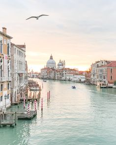 My Honeymoon Trip to Venice, Italy - Travel tips for a romantic and less stressful trip to Venice. Pictures of the Grand Canal, gondolas and St Mark's Square included! Sunrise overlooking the Grand Canal in Venice, Italy. Venice Travel, Italy Travel, Travel Europe, India Travel, Travel Usa, Beach Travel, Travel Abroad, Travel Vlog, Free Travel