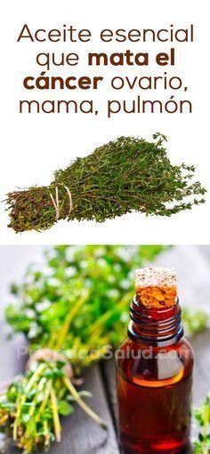 El aceite esencial de tomillo es super efectiva para contra las células cancerosas del pulmón, de los ovarios y de mama. Se recomienda agregar tomillo a tu dieta si padeces de ovarios poliquísticos.