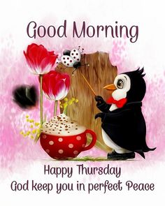Good Morning Happy Thursday, Happy Thursday Quotes, Good Morning Everyone, Good Morning Images, Good Morning Flowers Rose, Penguin Pictures, Perfect Peace, Morning Blessings, Picture Quotes