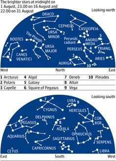 f9022aa5023 People also love these ideas. The Perseids meteor shower ...