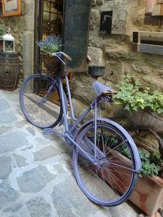 Purple bicycle in Cortona