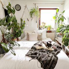 Garden Renovation Ideas, Indoor Gardening Supplies, Garden Design, Home And Garden, Inspiration, Garden Ideas, Urban, Furniture, Home Decor