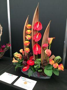 Bloom 2014 027