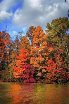 gorgeous fall colors along the lake. Autumn Cozy, Autumn Art, Fall Or Autumn, Autumn Leaves, Autumn House, Happy Autumn, Nature Sauvage, Autumn Scenes, Fall Pictures
