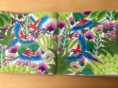 Scrapperdee's Ramblings as a SAHM: Colouring - Millie Marrotta Tropical Wonderland - parrots jungle #milliemarotta #tropicalwonderland