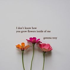 This site contains information about spring quotes flowers. Spring Quotes Flowers, Flower Quotes Life, Beautiful Flower Quotes, Beautiful Words, Beautiful Flowers, Poem Quotes, Cute Quotes, Qoutes, R M Drake