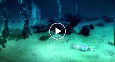 Vídeo Mostra Como a Natureza Responde a Quem Não a Respeita