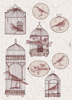 Pin Antique Bird Cage Tattoo Cages Pictures On Pinterest