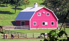 pink+barn | Pink Barn In The Summer Photograph - Pink Barn In The Summer Fine Art ...