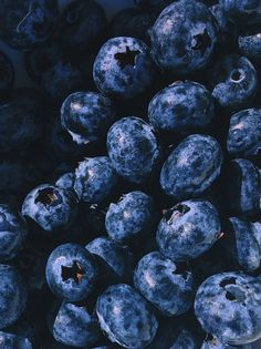 Mar 29 2020 200 Colorful Fruit Pictures Pexels Free Stock Photos Closeup Photography Blueberry Fruits This image Easy Blueberry Pie, Blueberry Pie Recipes, Blueberry Fruit, Photo Fruit, Fruit Picture, Fruit Photography, Close Up Photography, Photography Photos, Shotting Photo