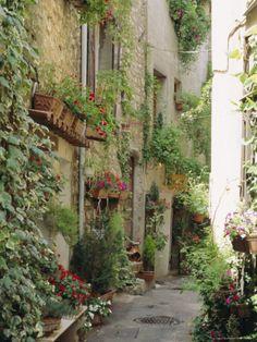 Mougins, Alpes Maritime, Cote d'Azur, Provence, France Photographic Print by J P De Manne at AllPosters.com