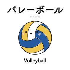 [206]  バレーボール  |  barēbōru  |  volleyball