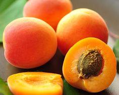 Aprikose - die Beauty-Expertin Aprikose - die Beauty-Expertin  Was in ihr steckt: 4 Aprikosen (200 g) liefern ca. . . . ● 86 Kilokalorien ● Energiedichte: 0,4 kcal/Gramm ● 590 Mikrogramm Vitamin A (75 Prozent der empfohlenen Tageszufuhr) ● 0,1 Milligramm Vitamin B6 (12 Prozent der empfohlenen Tageszufuhr)