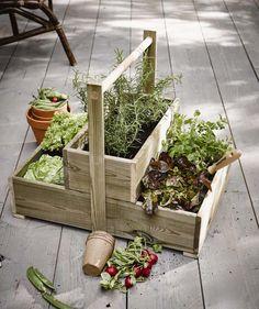 KARWEI   Handig en leuk: maak zelf dit kastje voor het kweken van groente en kruiden. #karwei #diy #wooninspiratie