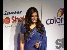 Raveena Tandon in transparent saree @ Stree Shakti Women Awards 2014.