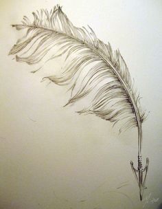 "Feather sketch | would be a pretty tattoo ""love would send an arrow to your heart"" © Rod Morgan from ""Entropy"" 1975"