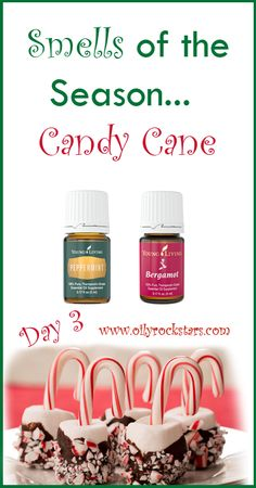 """Today is Day 3 of my series... """"Smells of the Season."""" Everyone knew this smell was coming, I am sure. The holidays aren't complete unless you have some candy canes. They are on every store shelf right now. And I think every Santa hands them out to the kiddos. Now I must admit, I do not care for the taste of them. But I LOVE the smell!!"""