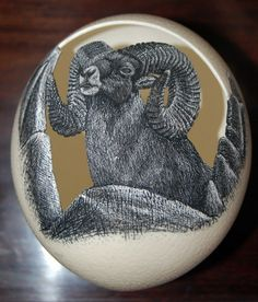 An ostrich eggshell containing a shallow relief carving of a bighorn ram which was then rendered in scrimshaw.