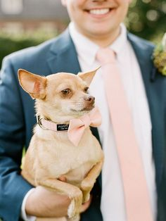 Blush Pink Dog Bow Tie With Matching Leash - Dog in Wedding By Poppy Parker Bridal Shower Prizes, Unique Bridal Shower, Wedding Photography And Videography, Fine Art Wedding Photography, Photography Business, Photography Couples, Fashion Photography, Foto Wedding, Dream Wedding