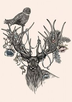 #deer #owl #flowers #illustration