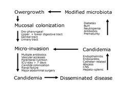 Invasive Candida