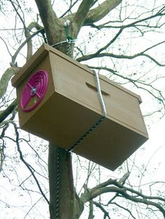 betterbee wood nucleus box as a swarm trap Time to start thinking about those June Swarms