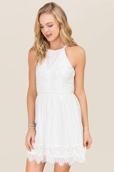 London Mesh Lace A-line Dress   francesca's