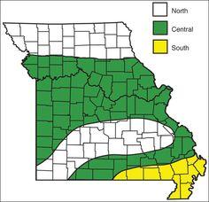 Hardiness zones in Missouri - G6201 Vegetable Planting Calendar | University of Missouri Extension